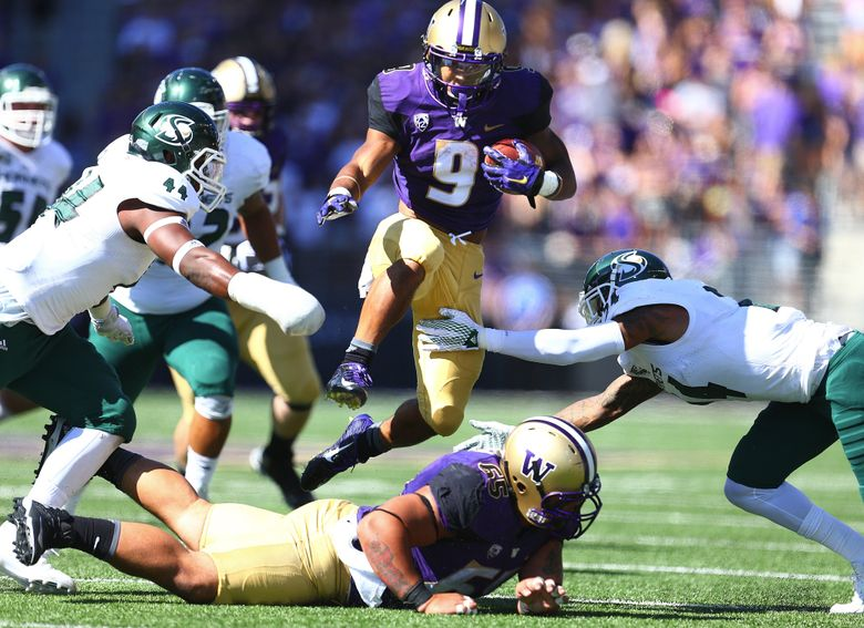 Running back Myles Gaskin found plenty of room to run on Saturday, rushing for 146 yards and three touchdowns. (John Lok/The Seattle Times)