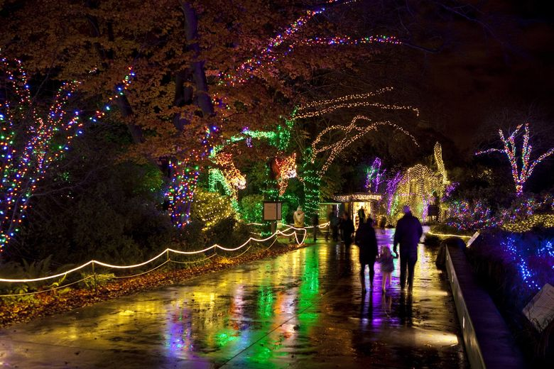 People walk under trees wrapped in Christmas lights during WildLights at the Woodland Park Zoo in 2012. This year's WildLights is open daily through Jan. 3. (BETTINA HANSEN/The Seattle Times)