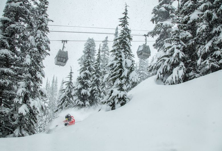 A skier finds deep pockets of powder at Whistler-Blackcomb Resort. Photo courtesy of Mitch Winton at Coast Mountain Photography and Whistler-Blackcomb Resort.