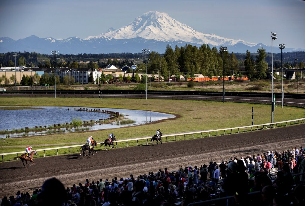 Mt. Rainier is out in all its glory as the crowd cheers at Emerald Downs on the opening day of the 2015 racing season April 16, 2015. (Dean Rutz / The Seattle Times)
