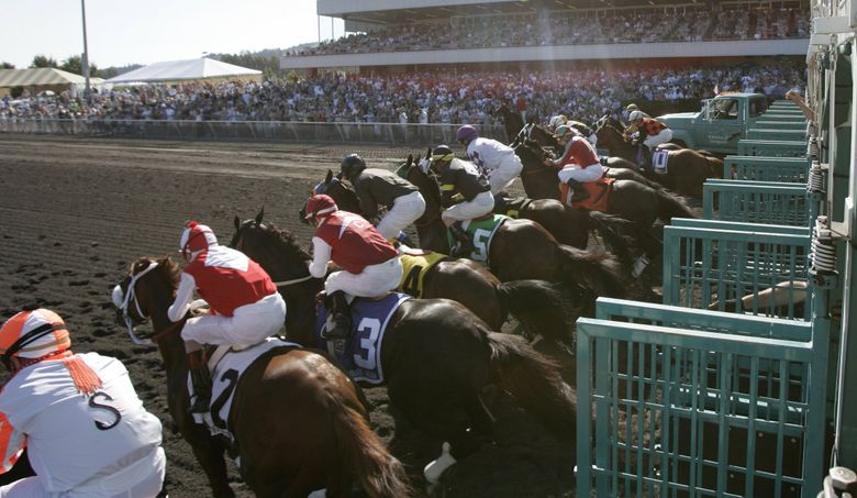A field of 11 horses leaves the gate for the 70th running of the Longacres Mile on Aug. 21, 2005, at Emerald Downs. (Rod Mar / The Seattle Times)