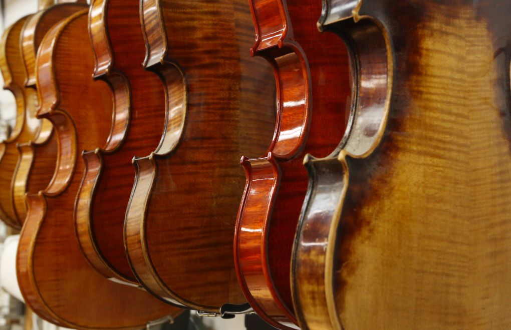 Violins in the workshop of Rafael Carrabba, a local restorer of rare and valuable instruments. (Ken Lambert/The Seattle Times)
