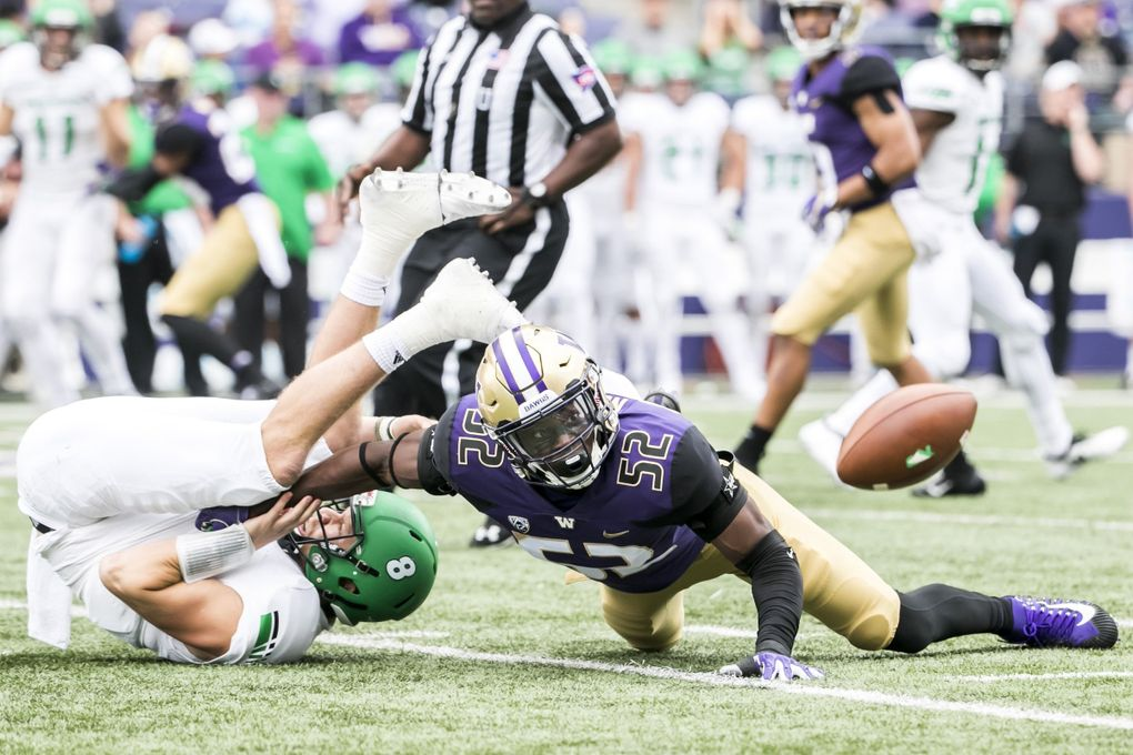 Huskies linebacker Ariel Ngata forces Fighting Hawks quarterback Nate Ketteringham to fumble, recovered by Huskies defensive back Taylor Rapp in the first quarter as the University of Washington Huskies take on the North Dakota Fighting Hawks for their home opener at Husky Stadium in Seattle Saturday September 8, 2018. (Bettina Hansen / The Seattle Times)