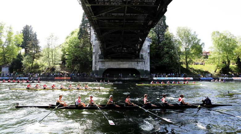 Shells head east under the Montlake Bridge after the last race, the men's Windermere Cup, in the 33rd annual regatta. (Alan Berner / The Seattle Times)