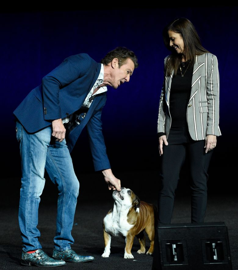 """FILE – In this April 3, 2019, file photo, Dennis Quaid, left, a cast member in the upcoming film """"A Dog's Journey,"""" attends to his dog as the film's director Gail Mancuso looks on during the Universal Pictures presentation at CinemaCon 2019, the official convention of the National Association of Theatre Owners (NATO) at Caesars Palace in Las Vegas. The 2018 family hit """"A Dog's Purpose"""" was marred by accusations of animal abuse after a video of a frightened dog that appeared to be forced into rushing water during the making of the film was posted by TMZ. Quaid starred in both movies (Photo by Chris Pizzello/Invision/AP, File)"""