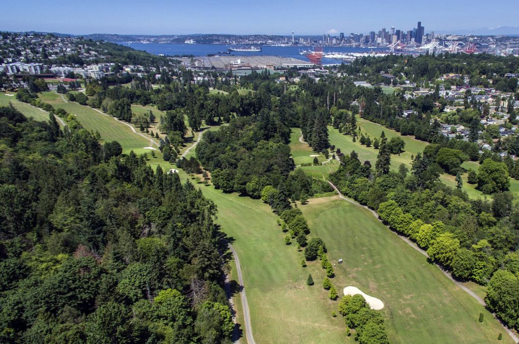 View of the West Seattle Golf Course. (Steve Ringman / The Seattle Times)