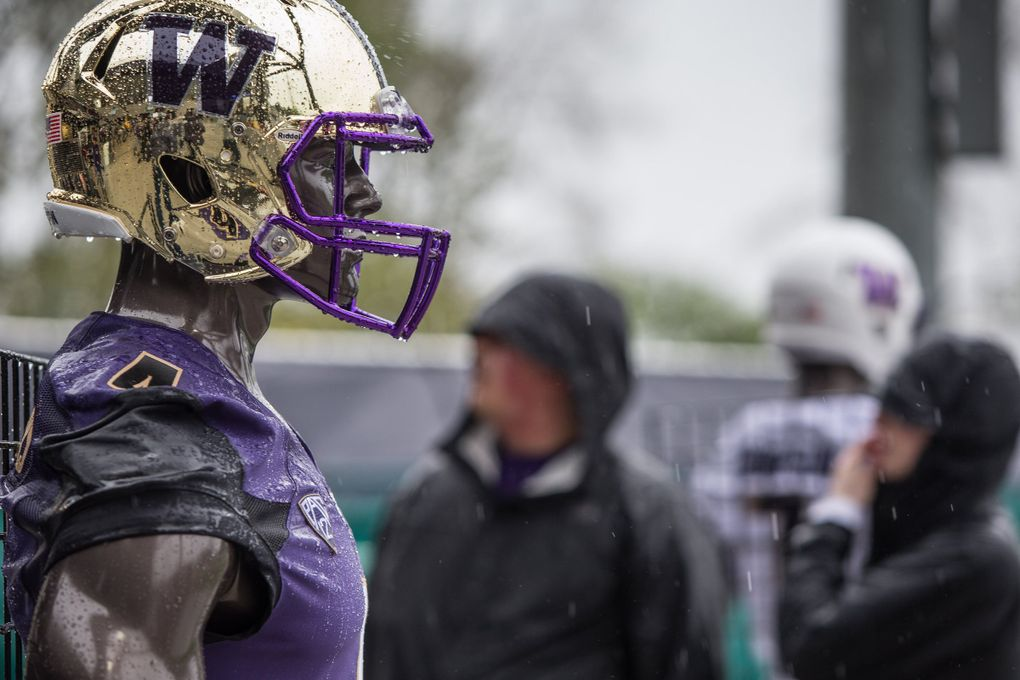 Fans braved a heavy rain to watch the Huskies in their spring game at Husky Stadium and see the new uniforms on display for the first time since their debut in 2016. (Dean Rutz / The Seattle Times)