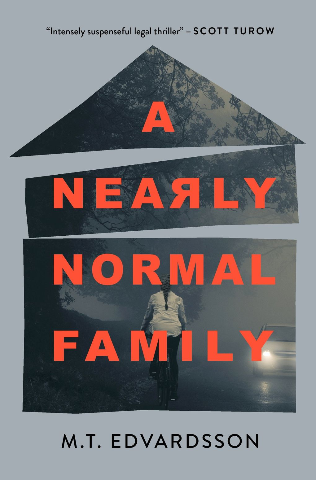 """""""A Nearly Normal Family"""" by M.T. Edvardsson (Celadon Books)"""