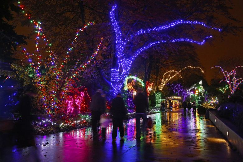 Woodland Park Zoo's WildLights are open from 5:30 to 8:30 p.m. Thursday, Dec. 26, to Sunday, Jan. 5. (Mark Harrison / The Seattle Times, file)