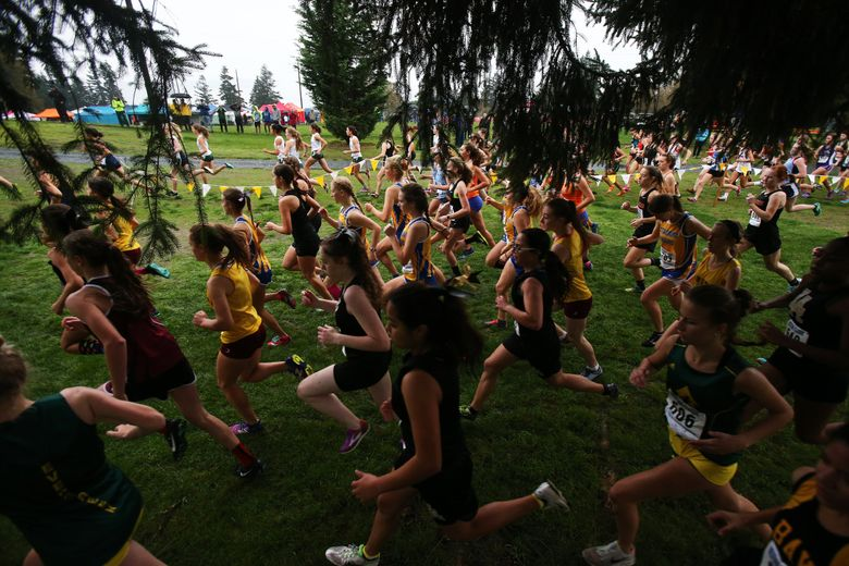 The Class 3A girls runners make their way around the first turn during the 2016 Westside Classic District cross country meet at the American Lake Golf Course in Lakewood on Saturday, October 29, 2016.  (Logan Riely / The Seattle Times, file)