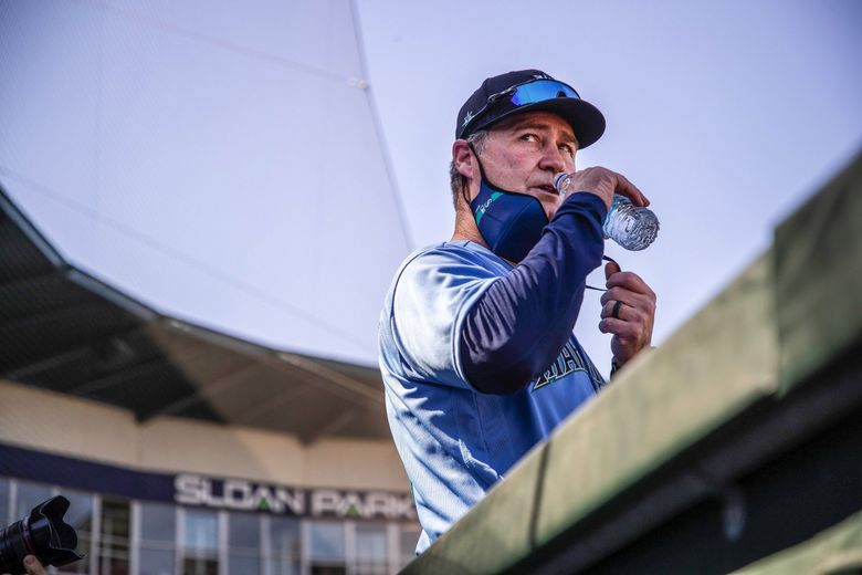 Mariners manager Scott Servais stands at the top of the Mariners dugout during a spring-training game last month. (Dean Rutz / The Seattle Times)