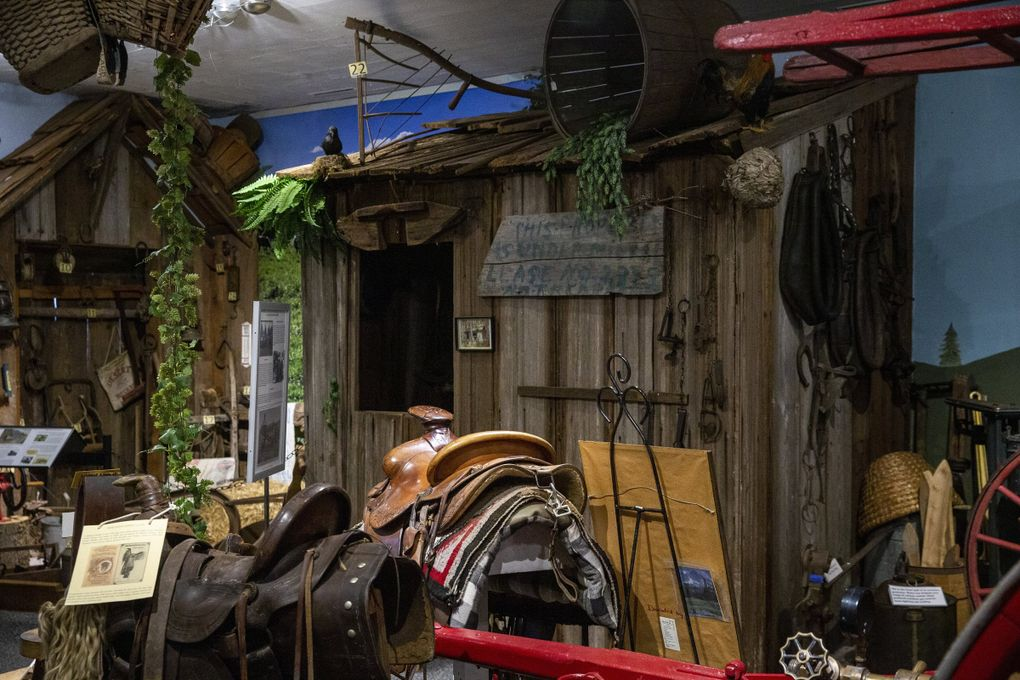 """A hunting cabin on the first floor of Foothills Historical Museum in Buckley, Washington. The hunting cabin was found in the woods by Dr. Charles """"Jess"""" Rose, the museum's founder, and moved and reassembled plank by plank for the museum. (Amanda Snyder / The Seattle Times)"""