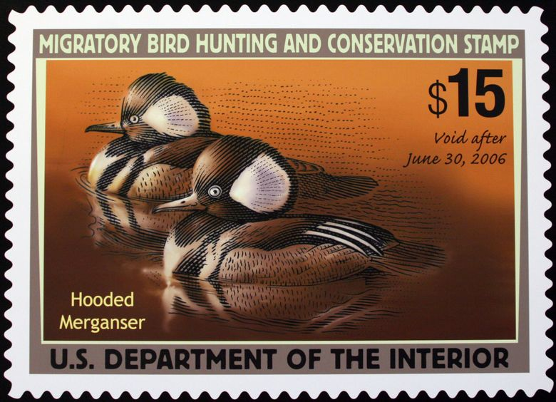 The 2005-2006 Federal Duck Stamp was designed by Mark Anderson of Sioux Falls, S.D. Artists will no longer have to incorporate hunting imagery to win a spot for their work on the federal duck stamp, reversing a Trump-era requirement. The U.S. Fish and Wildlife Service says eliminating the requirement from its annual Federal Duck Stamp contest will give artists more flexibility. (AP Photo/Lauren Victoria Burke,file)