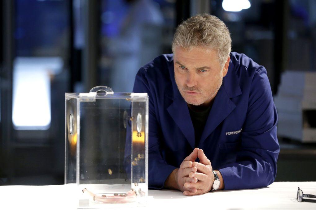 "William Petersen is back in ""CSI: Vegas,"" the sequel to CBS' ""CSI: Crime Scene Investigation."" (Sonja Flemming / CBS)"